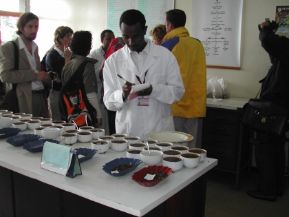 Bevor der Kaffee Äthiopien verlässt, wird er in der staatlichen Prüfanstalt gründlich untersucht und getestet.