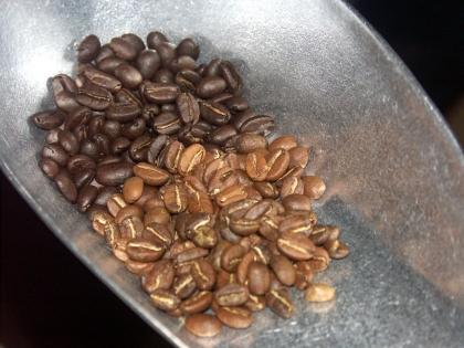 Farbvergleich gerösteter Kaffeebohnen