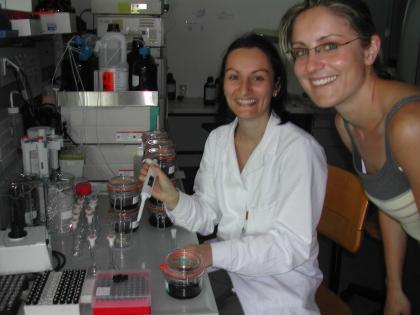 Dr.Isnardi und Mag.Haidenbauer bei der Arbeit