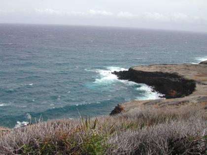 Hawaii heißt die ganze Inselkette und die größte Insel, Big Island, Hawaii, ist eine erdgeschichtlich junge Insel (500.000 Jahre alt) und immer noch vulkanisch aktiv.
