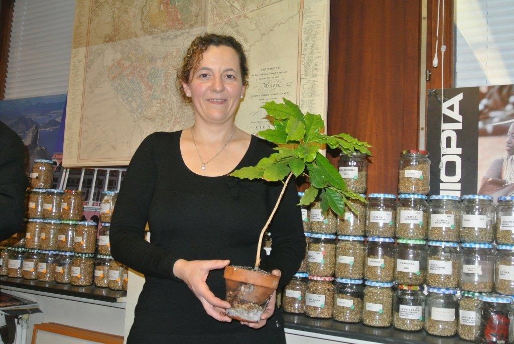 Die Siegerin des Röstens: Frau A.Steinkellner mit dem Preis: einem Kaffeebaum